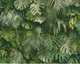 Tapeta 37270-1 Monstera