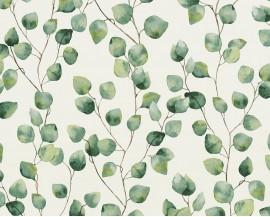 Tapeta 37044-1 Liście eukaliptusa