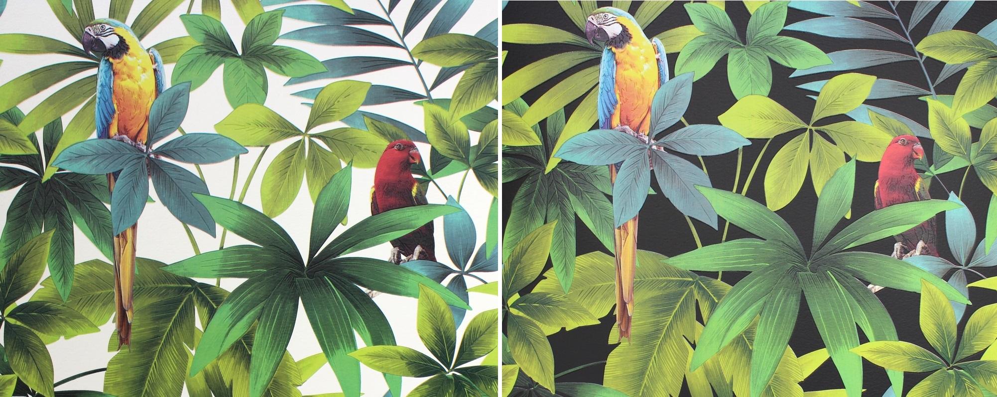 tapety w papugi