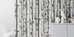Tapety w kultowe brzozy